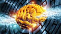Military Hopes Zapping Brains Leads to Faster Language Learning