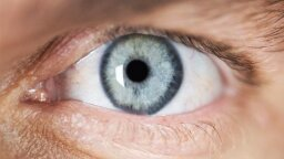 Science Determines How Long Until Eye Contact Turns Awkward