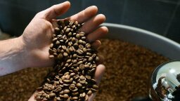 Why Fears of an Impending Coffee Shortage May Be Justified