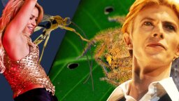 Shakira's Moves, David Bowie's Haircut Inspire Insect Names