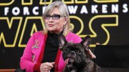 5 Times Carrie Fisher Delighted Us Promoting 'Star Wars: The Force Awakens'