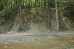 Is off-roading bad for the environment?