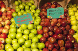 How Organic Food Works