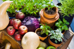 How much more does organic food cost and why?