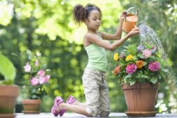 5 Outdoor Craft Ideas for Kids