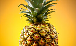 Why do pineapple enzymes tenderize steak -- and your tongue?