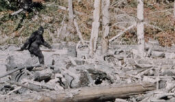 Stuff to Blow Your Mind: Skeptics and Sasquatches [AUDIO PODCAST]