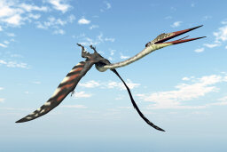 How Pterosaurs Work