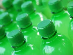 Ultimate Guide to Recycled Soda Bottle Crafts