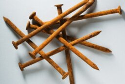 If you step on a rusty nail, will you really get tetanus?