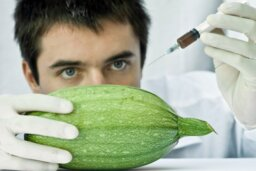 How Science Changed the Food Industry
