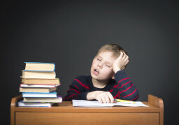 Does sleeping after learning make you smarter?