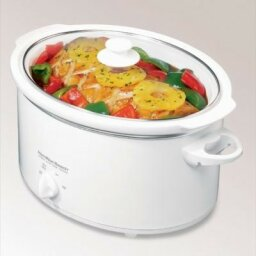 Slow Cooker Questions
