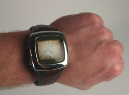 How Smart Watches Work