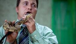 How Snake Handlers Work