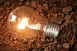 How Soil Lamps Work