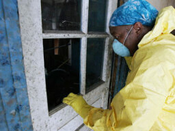 How to Test For Toxic Mold
