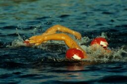 How do triathletes stay motivated?