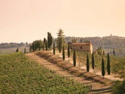 Ultimate Guide to the Tuscany Wine Region