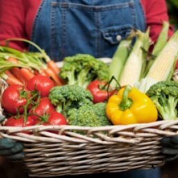 Quick Tips: Does vegetarianism improve your skin?