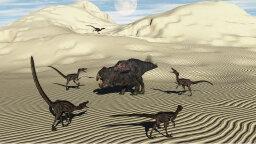 Velociraptors Likely Hunted Solo, Despite Pop Culture Depiction