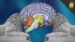 Stuff to Blow Your Mind Video: Constructing a Memory Palace