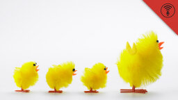 Stuff You Should Know: Internet Roundup: Bionic Genitals & A Fake Poultry Show
