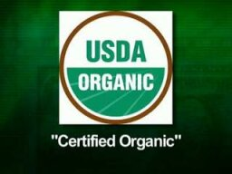 Should you only feed your teen organic food?