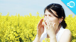 BrainStuff Video: Why Do Some People Sneeze In Sunlight?