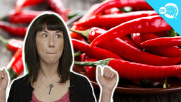 BrainStuff: Why Does Spicy Food Make Your Nose Run?