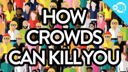 BrainStuff: How Crowds Can Kill You [VIDEO]