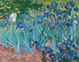 Vincent van Gogh Paintings from Saint-Remy