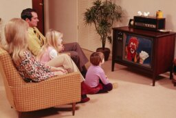 How do television ratings work?