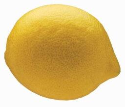 What is Lemon Zest?