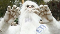 "Are the Yeti Just a Bunch of Bears? Genetics Says ""Yes."""