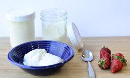 How Yogurt Works