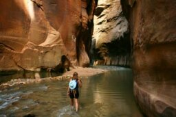 A Guide to Hiking the Zion Narrows