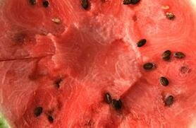 Watermelon is healthy AND delicious!