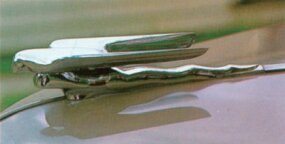 The hood ornament was an add-on not normally included in the stripped-down Nash 600.