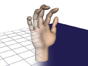 Adding a surface to the wireframe begins to change the image from something obviously mathematical to a picture we might recognize as a hand.
