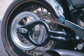 The 300 VM Appaloosa's swingarm is decorated like a spade.