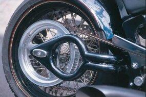 The 300 VM Appaloosa's swingarm is decorated like a spade.