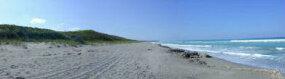 Barrier island beach