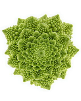 Cauliflower fractal