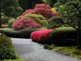 Japanese Garden, Portland, OR; Photo by Dave Gilmore.