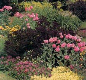 Cottage Garden Ideas | HowStuffWorks