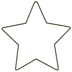 Base your star pattern on this illustration.