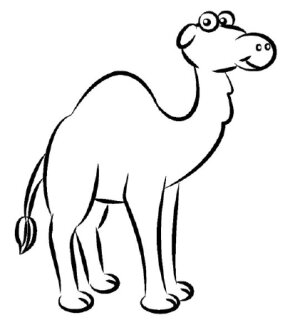 How to Draw a Camel | HowStuffWorks