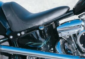 Custom pinstriping individualizes a factory-built bike.