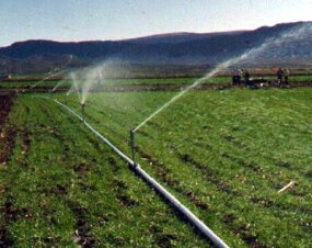 """Hand Move"" portable sprinkler system"
